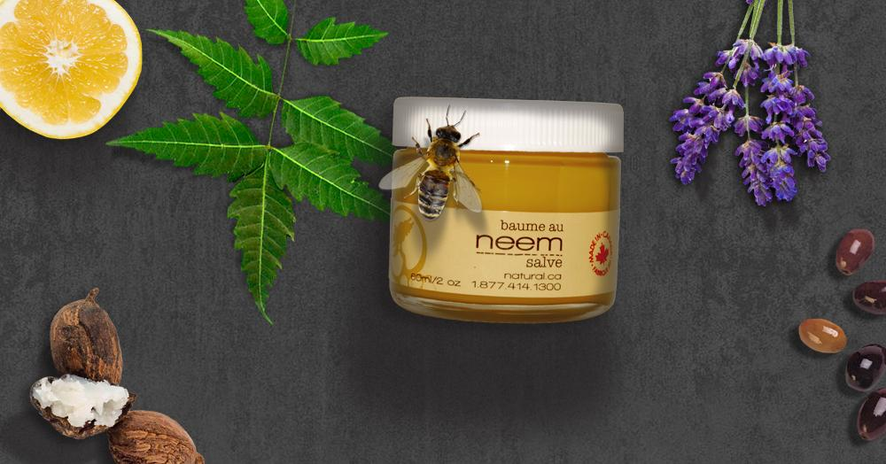 neem salve fungus warts acne eczema